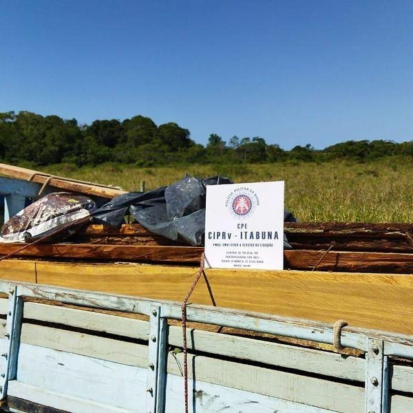 PM rodoviária apreende carregamento de madeira ilegal no sul da Bahia