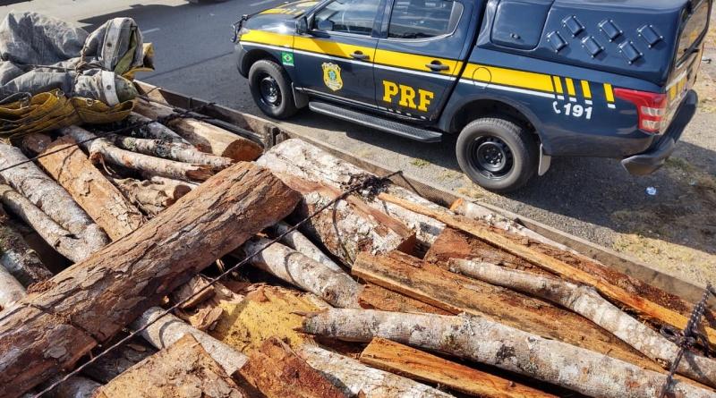 PRF apreende carga de madeira clandestina na BR 330