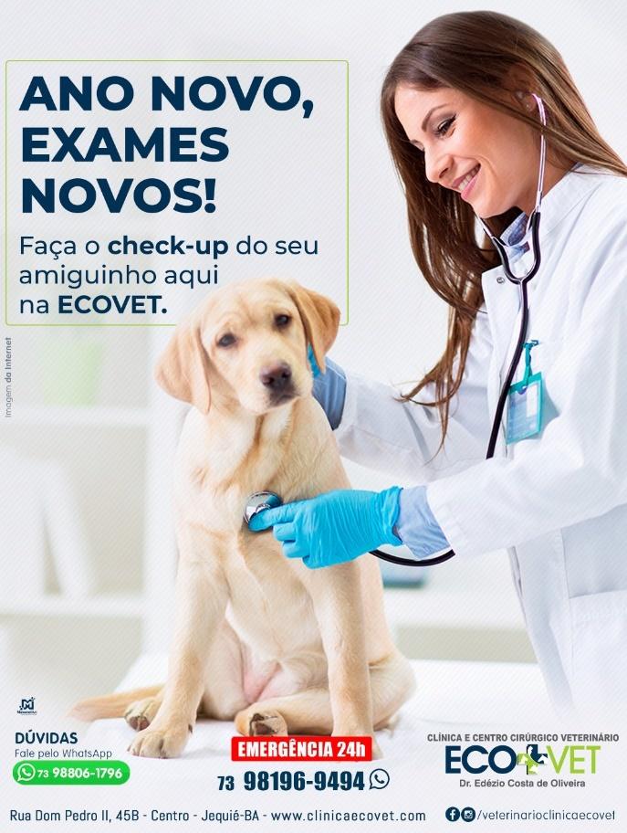 Atenção para a saúde canina!