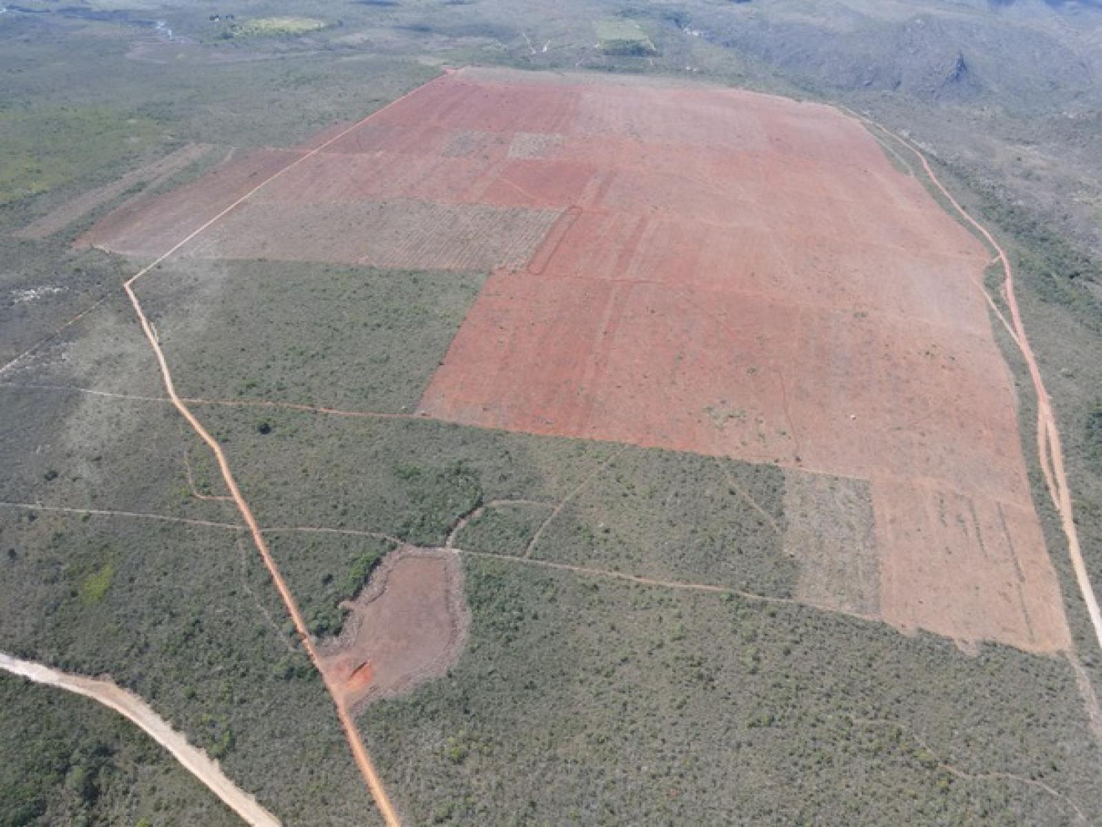 MP ajuíza ação contra desmatamento ilegal em fazenda do agronegócio em Piatã